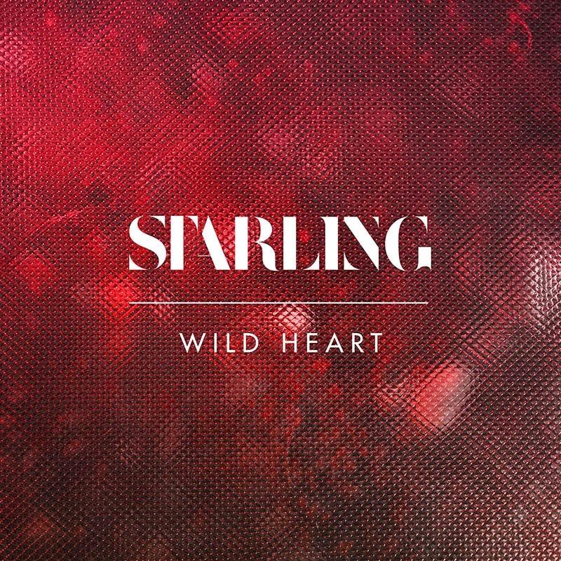 Wild Heart Release Artwork